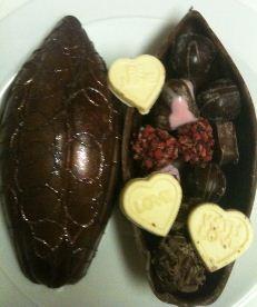 chococo cocoa pod