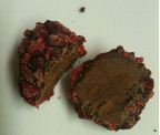 chococo raspberry