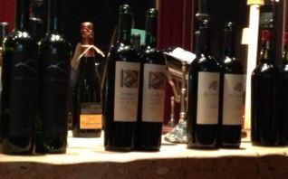 gaucho wines