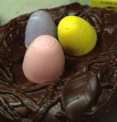 HC egglet nest