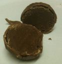 Melt Chocolates Mixed Chocolates